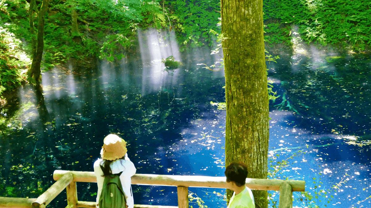 白神山地の青池を訪れたい人へ